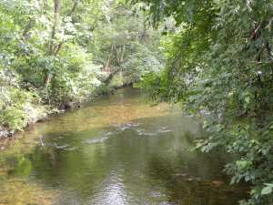 Grainer River