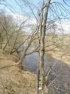 Henze Thornton River View