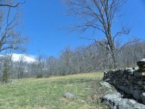 Beahm Stone Wall BEST