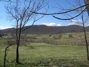 Beahm View